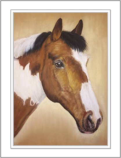 freddie horse