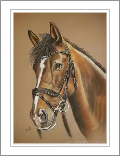 Riverdance Horse Portrait