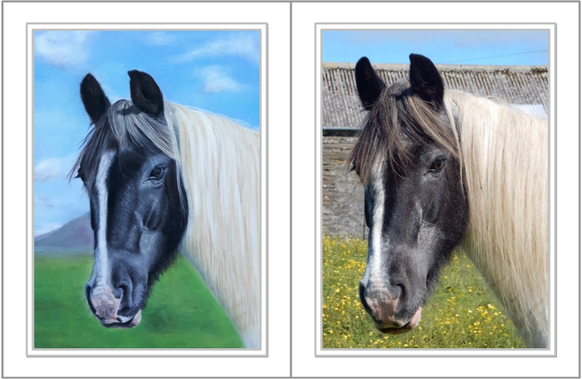 horse-portrait-comparison