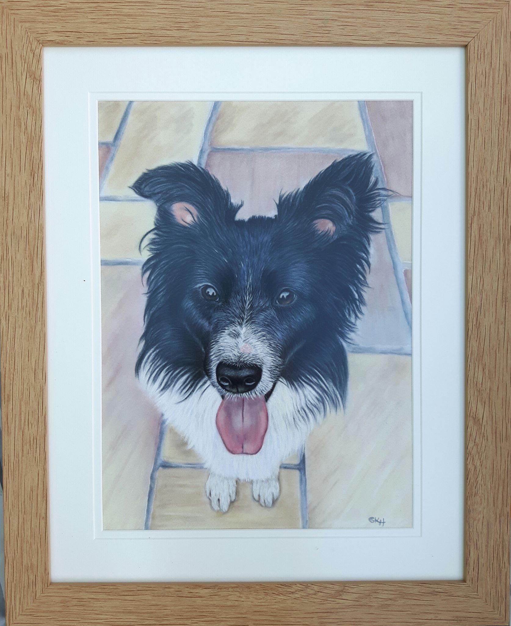 Ginny dog Portrait