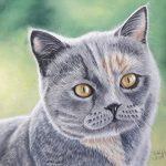 Gracie a custom cat portrait in soft pastel