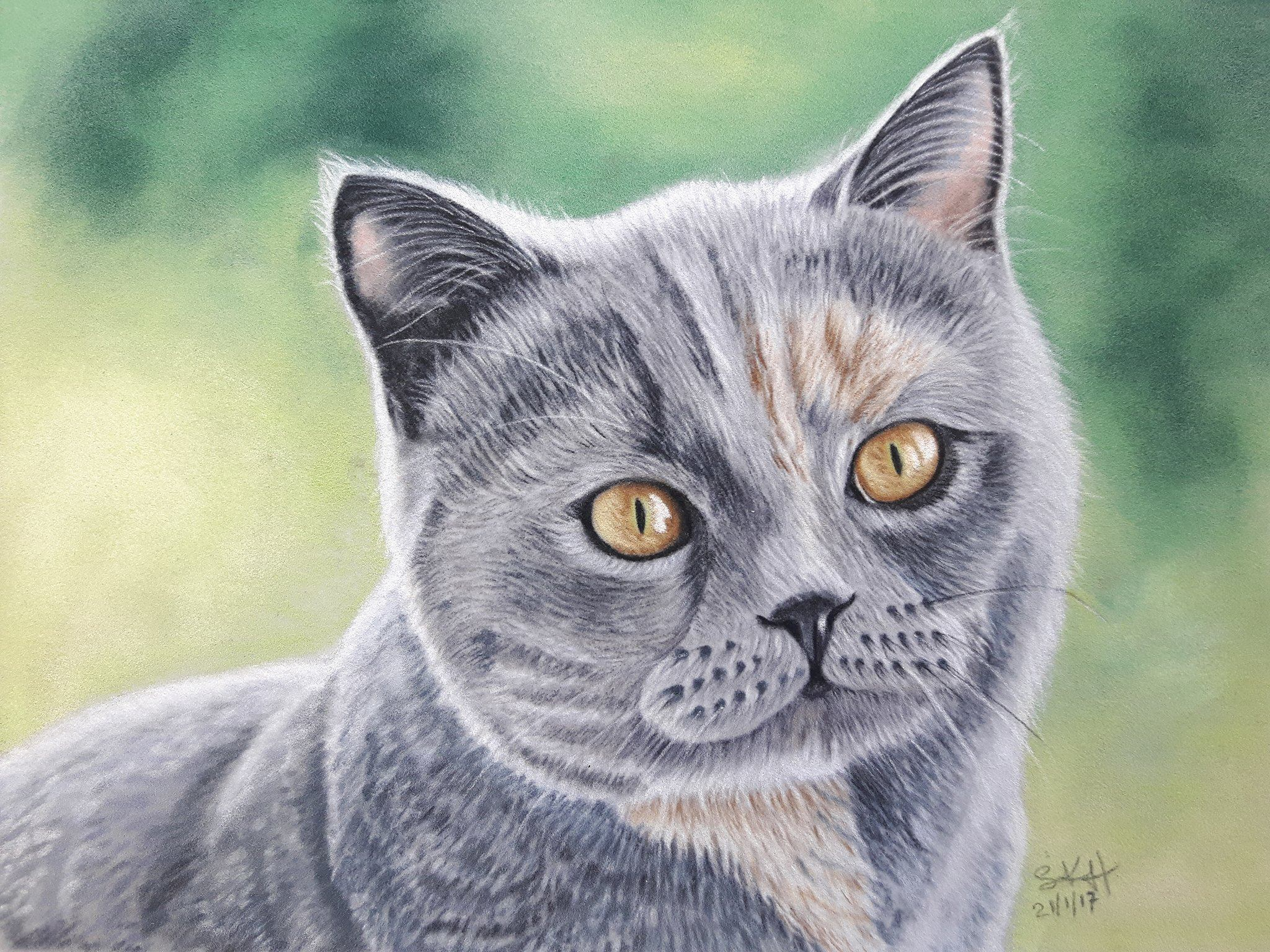 Gracie Cat Portrait Painting