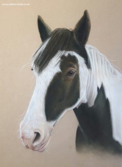 Hubert Horse