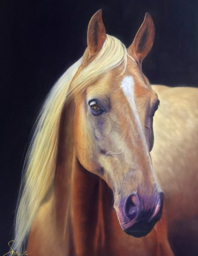 horse-in-soft-pastel