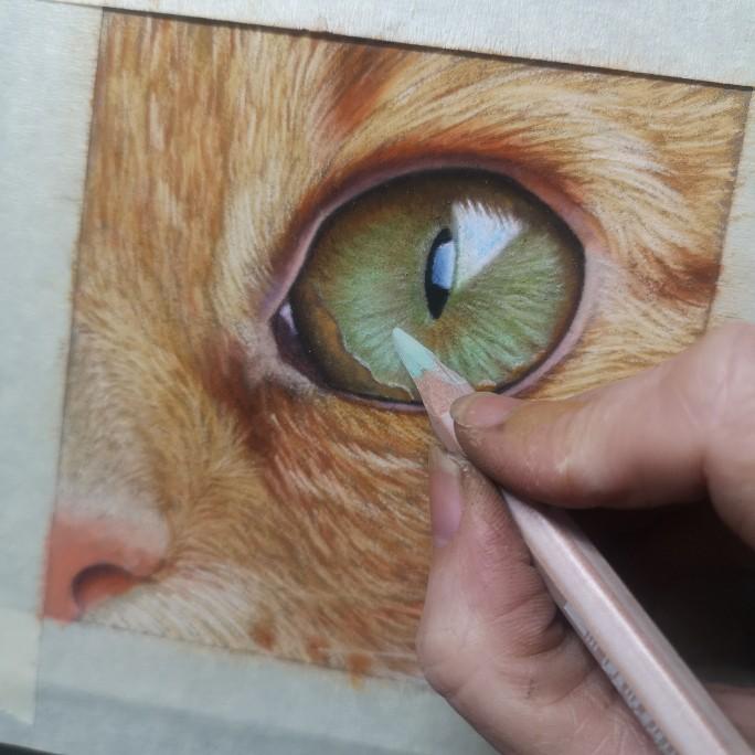 cat-eye-on-pastelmat