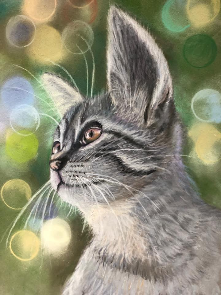 kitten portrait soft pastel